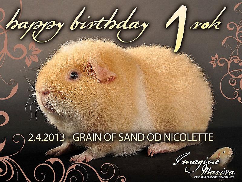 Graník dnes slaví svoje první narozeniny