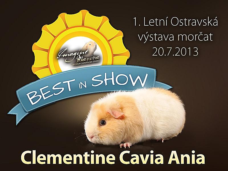 Krásné výsledky z 1. Letní Ostravské výstavy