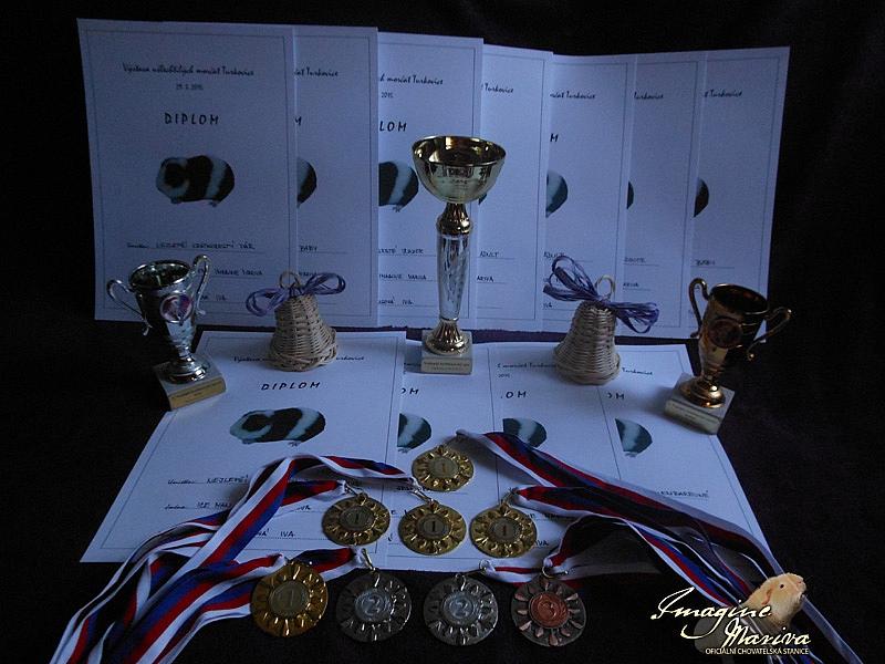 Výstava Turkovice 2015