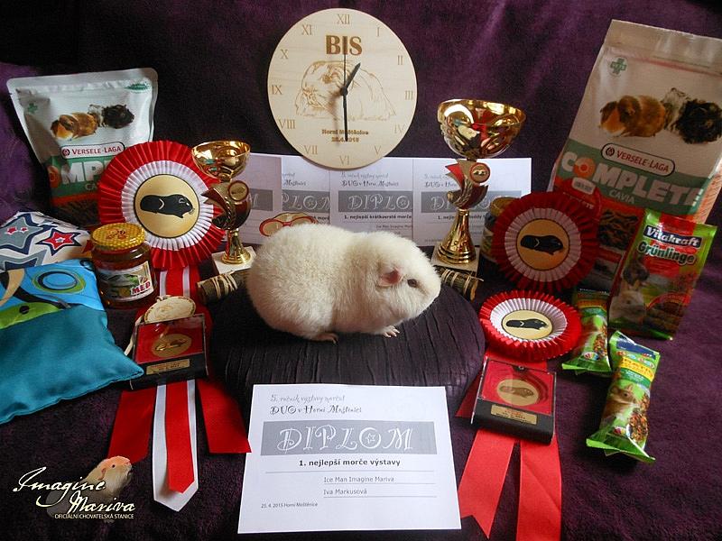 Krásný úspěch na Přerovské výstavě - Best in Show výstavy